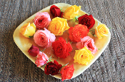 Flower Rose Assorted 25 Ct
