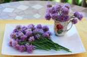 Flower Chives Blossom 50 Ct