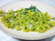 Flower Fennel Blossom 50 Ct