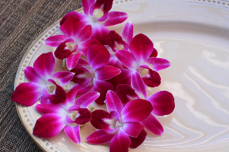 Decorative Flower Orchid