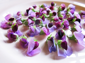 Flower Pea 50 Ct