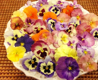 Flower Premium Pansy Spring Mix 50 Ct