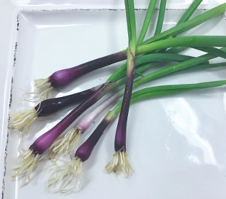 Tiny Veggies™ Scallion Red